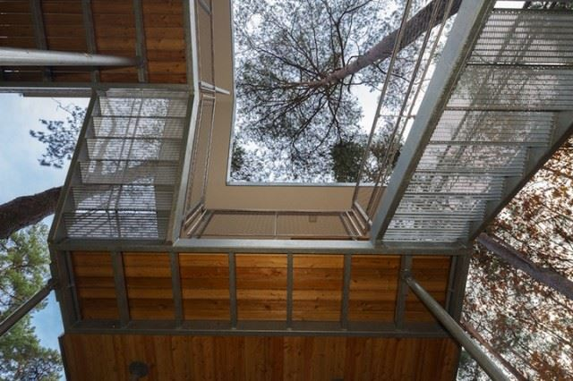 Treehouse_03