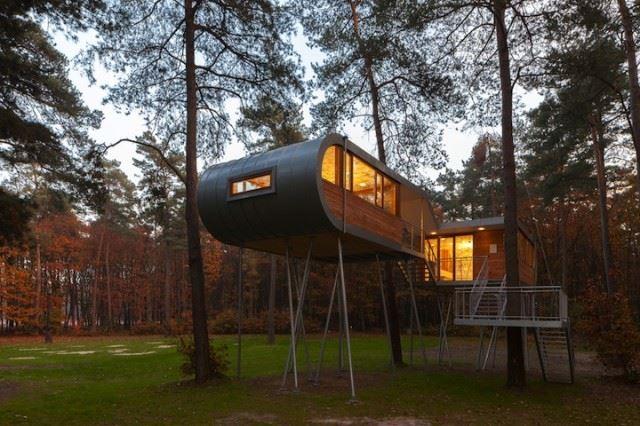 Treehouse_11