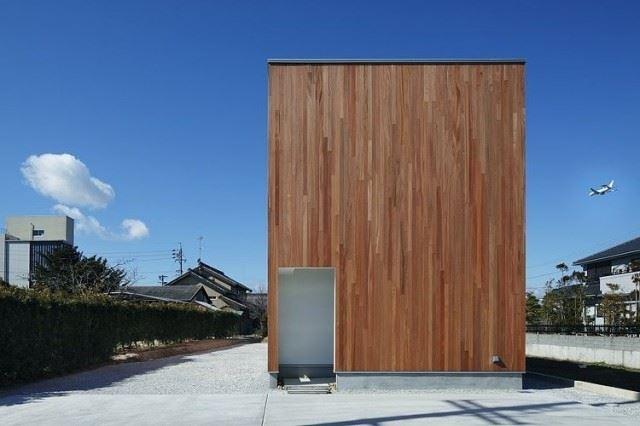 003-rhythm-plum-tree-keisuke-kawaguchi-k2design