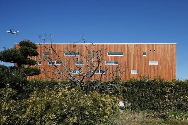 004-rhythm-plum-tree-keisuke-kawaguchi-k2design