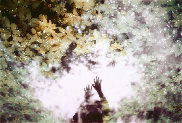 Magical-Double-Exposure-in-The-Forest-14