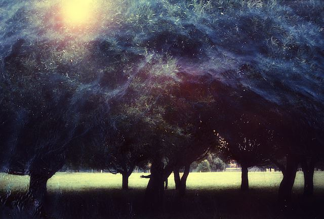 Magical-Double-Exposure-in-The-Forest-16