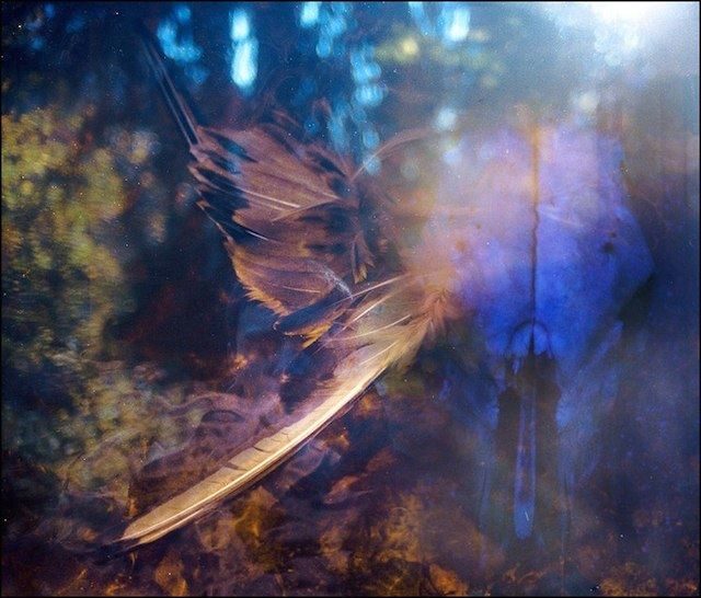 Magical-Double-Exposure-in-The-Forest-22b