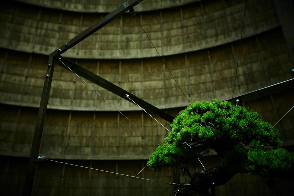 shiki-bonsai-power-station-belgium-IM