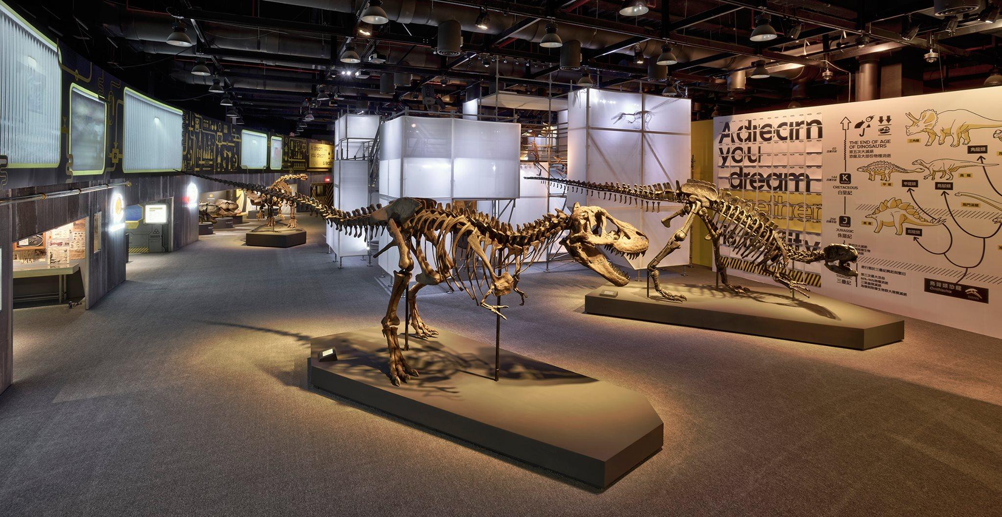 DINOLAB恐龍實驗室