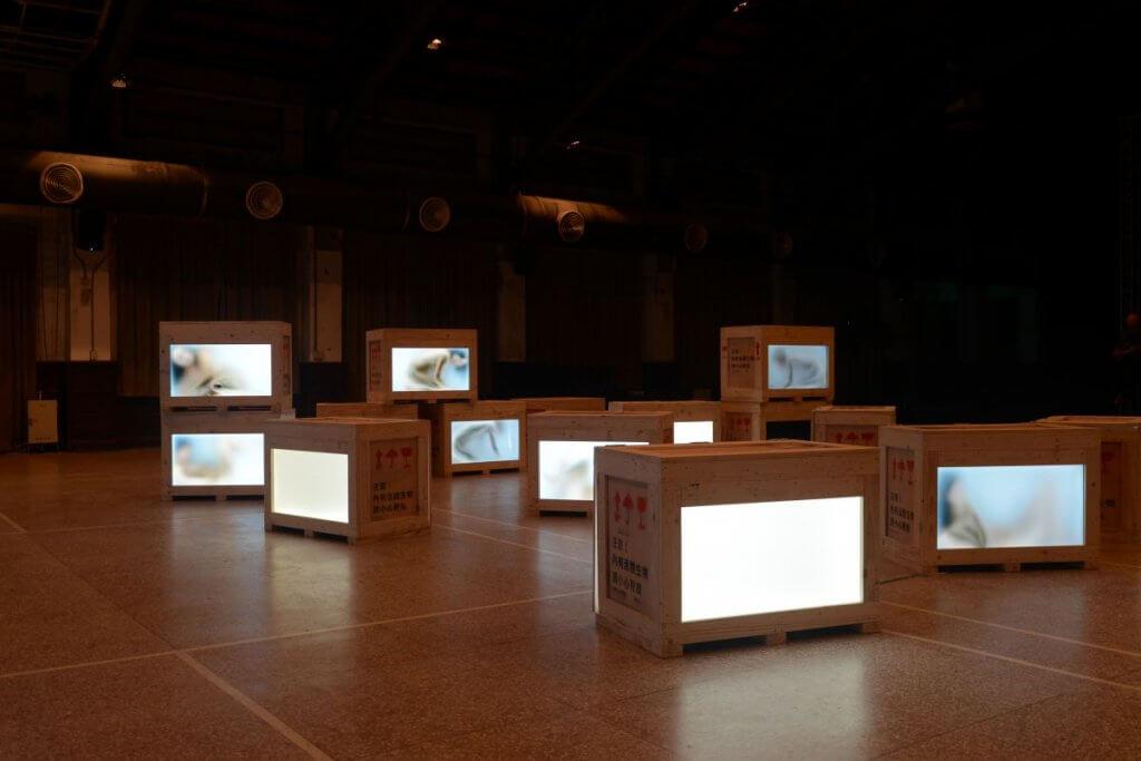 bluerider art,翻牆,藝廊,畫廊,實驗,藝術,美學,城市美學新態度